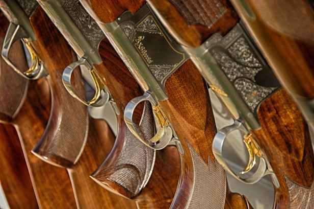 guns-rifle-weapon-target-50571.jpeg