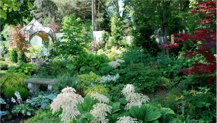 Shade garden 3_photo credit Melinda Myers LLC