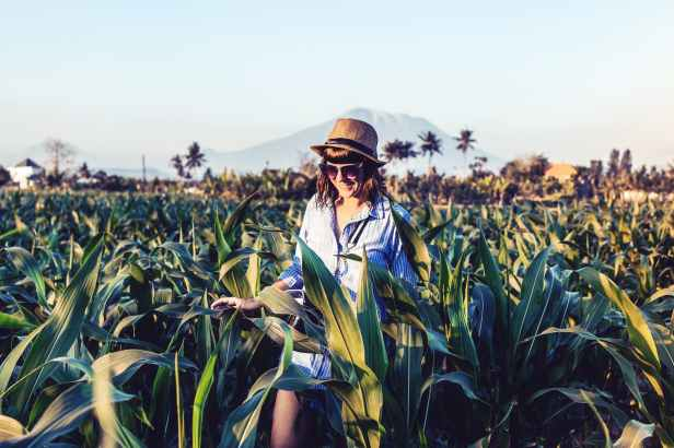 photo of smiling woman walking in the middle of a corn field