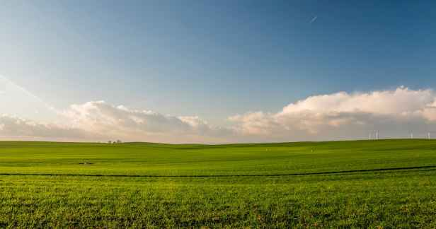 agriculture countryside crop cropland