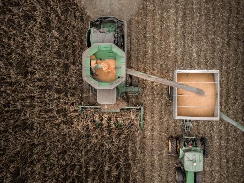 farming planting.jpg